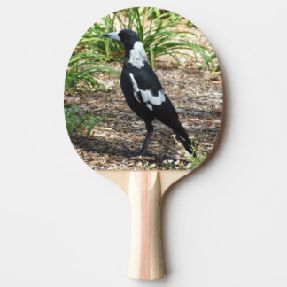 Australian Magpie Ping Pong Paddle