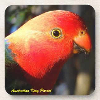 Australian Male King Parrot Coaster