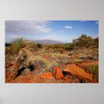 Australian Outback Desert Poster