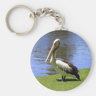 Australian Pelican along the River Torrens. Basic Round Button Key Ring