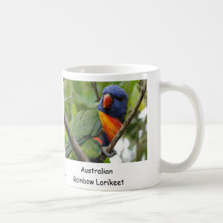 Australian Rainbow Lorikeet Coffee Mugs