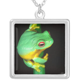 Australian Red Eye Treefrog, Litoria chloris, Silver Plated Necklace