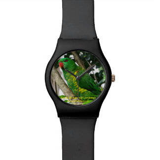 Australian Scaly Breasted Lorikeet Wristwatches