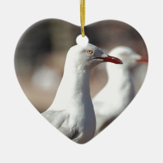 Australian seagulls at Sydney Harbour Ceramic Heart Decoration