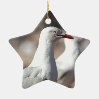 Australian seagulls at Sydney Harbour Christmas Ornament