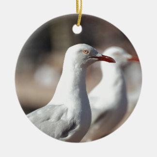 Australian seagulls at Sydney Harbour Round Ceramic Decoration