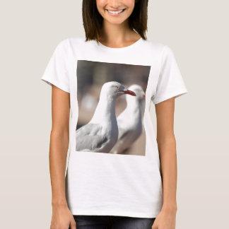 Australian seagulls at Sydney Harbour T-Shirt