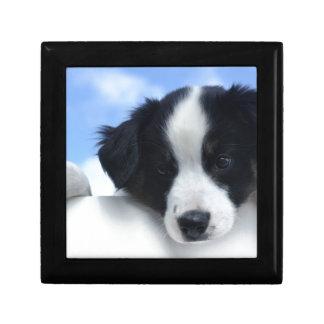 Australian Sheepdog Puppy Gift Box