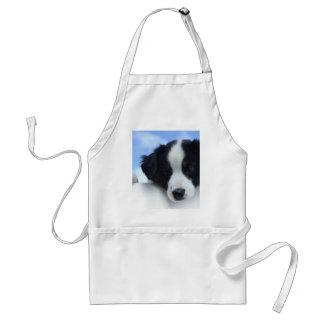 Australian Sheepdog Puppy Standard Apron