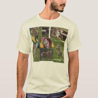 Australian Shepherd Agility T-Shirt