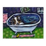Australian Shepherd bath Post Cards