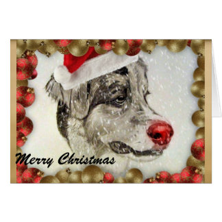 Australian Shepherd Christmas Card