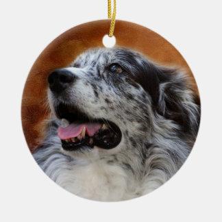 Australian Shepherd Classic Photo Ornament
