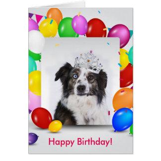 Australian Shepherd Dog Balloons Crown Birthday Card
