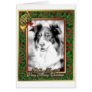 Australian Shepherd Dog Blank Christmas Card
