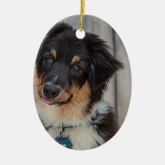 Australian Shepherd Dog Christmas Ornament