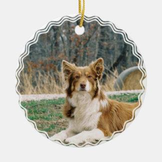 Australian Shepherd Dog Ornament