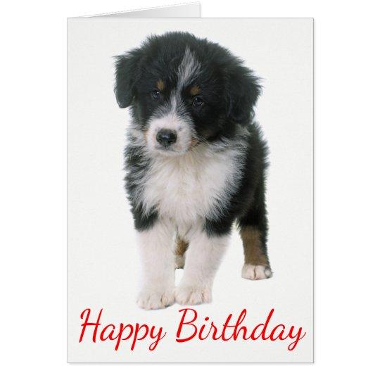 Australian Shepherd Happy Birthday Puppy Dog Card