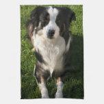 Australian Shepherd Photo Towel