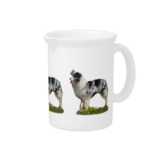 Australian Shepherd Pitcher