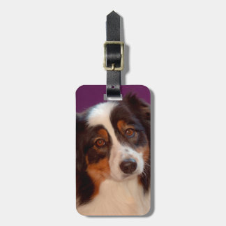 Australian Shepherd portrait Luggage Tag