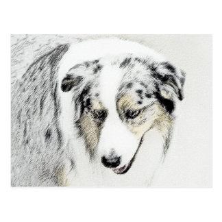 Australian Shepherd Postcard
