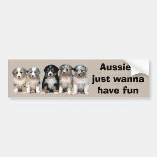 Australian Shepherd Puppies Bumper Sticker