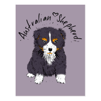 Australian Shepherd puppy, black trichloroethylene Postcard