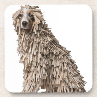 Australian Shepherd puppy full of Clothespin (5 Coaster