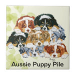 Australian Shepherd - Puppy Pile