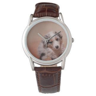Australian shepherd puppy wristwatches