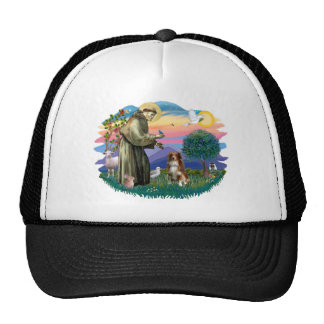 Australian Shepherd (red / white)) Trucker Hats