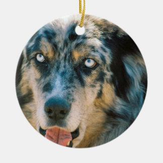 Australian Shepherd Rescue Ornament