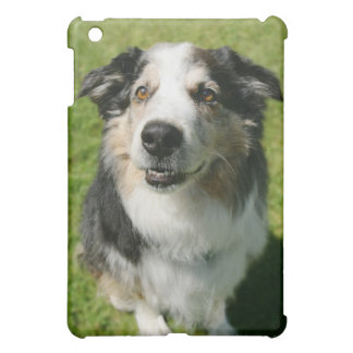 Australian Shepherd smiling at camera iPad Mini Covers