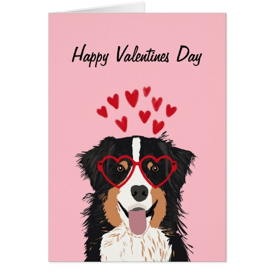 Australian Shepherd - tri coloured valentines love Card