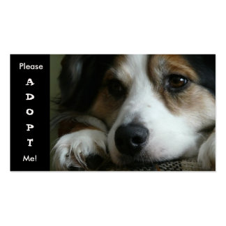 Australian Shepherd Working Dog Shelter Card Business Card Template