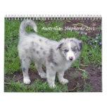 Australian Shepherds 2013 Calendar
