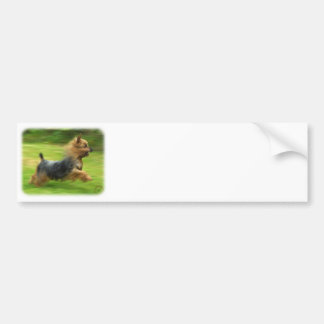 Australian Silky Terrier design Bumper Sticker