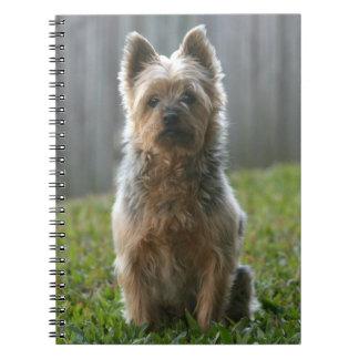 Australian Silky Terrier Note Book