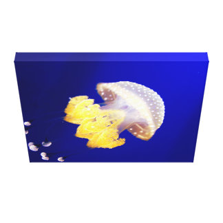 Australian Spotted Jellyfish Canvas Print