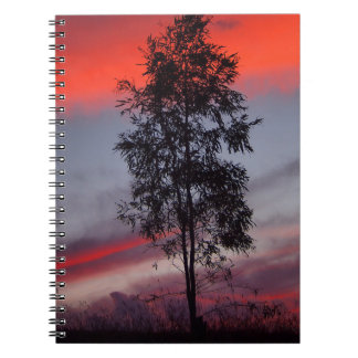 Australian stormy sunset notebook