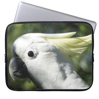 Australian Sulphur Crested Cockatoo Laptop Sleeve