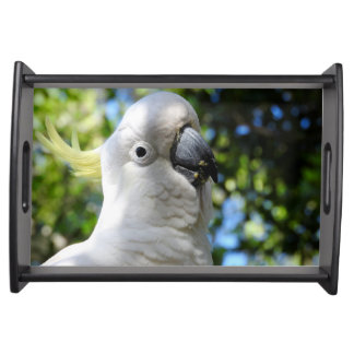Australian Sulphur Crested Cockatoo Serving Tray