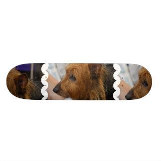Australian Terrier Skateboard