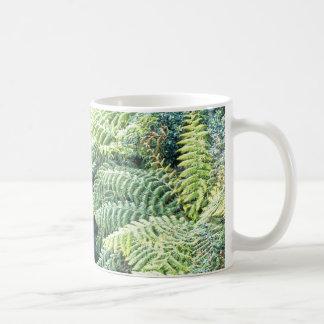 Australian Tree Ferns Coffee Mug