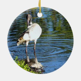 Australian White Ibis ornament