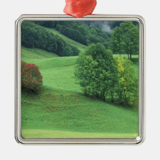 Austria. Rolling green hillside and trees Christmas Ornament