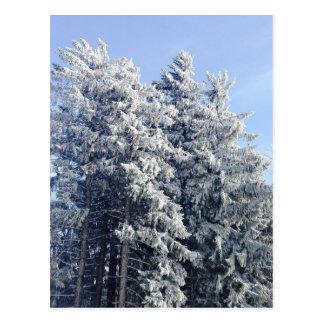 Austrian Winter Landscape Postcard