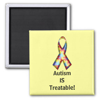 Autism IS Treatable! Magnet