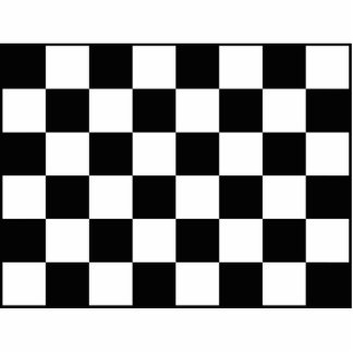 Auto Racing Chequered  Checkered Flag Standing Photo Sculpture